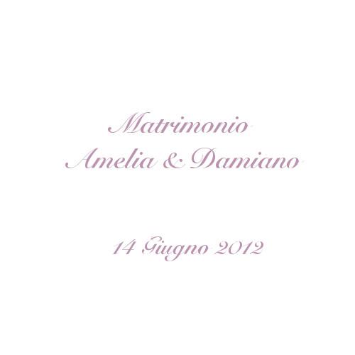 copertina album matrimonio Amelia